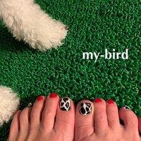 アニマル柄 🐩 🐄 きゅんっ  #mybird #paragel #nail #大森 #山王 #マイフットネイル #mybird #ネイルブック