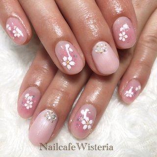 今年の桜は雪にも負けず、力強く咲いてくれましたね🌸  来年はどうか、お花見ができますように🌸  #桜 #チーク #春ネイル #春 #ハンド #ピンク #nailcafewisteria #ネイルブック