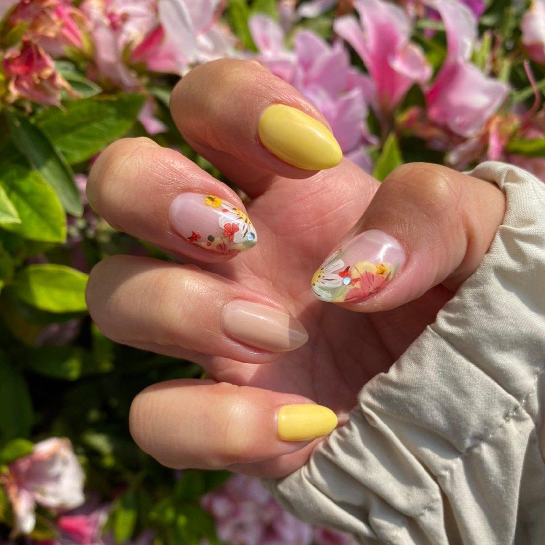 #お花ネイル #花びらネイル #花柄ネイル #花柄フレンチ #フレンチ #黄色 #春 #春ネイル #斉藤沙也香 #ネイルブック