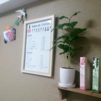 Salon de CHIHIROの投稿写真(NO:)